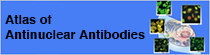 Atlas of Antinuclear Antibodies